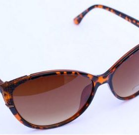Animal Print Sun GlassesÊ