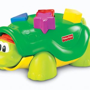 Tappy the Turtle