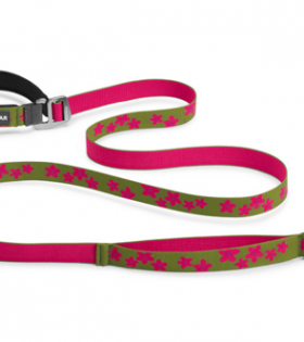 Ruffwear Flat Out Leash for Pets, Aspen